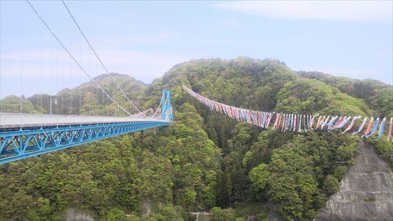 竜神大吊橋と鯉のぼり