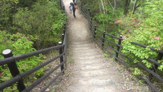 竜神ダム左岸側遊歩道1