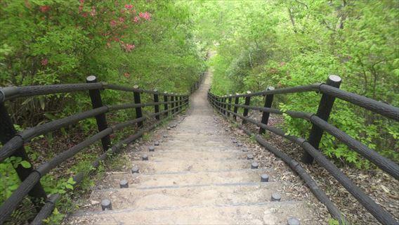 竜神ダム左岸側遊歩道3