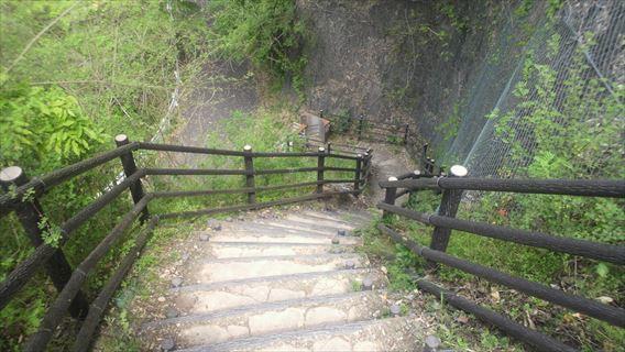 竜神ダム左岸側遊歩道4