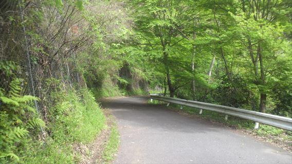 竜神ダム左岸側遊歩道5