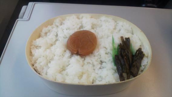 スペシャル日の丸弁当