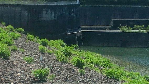 放流管の取水設備
