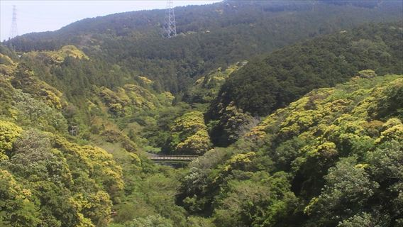 都田川ダム下流側