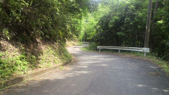 都田川ダム脇の道