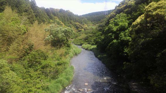 都田川下流