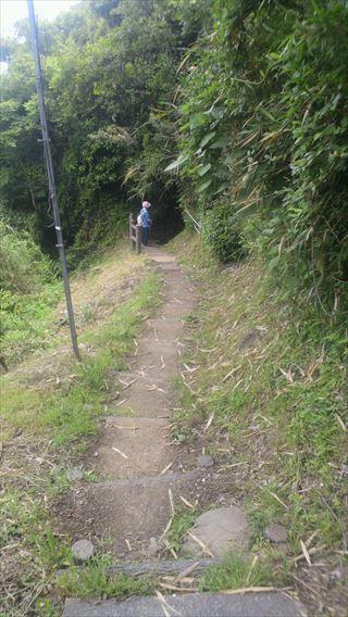 さった峠ハイキングコース5