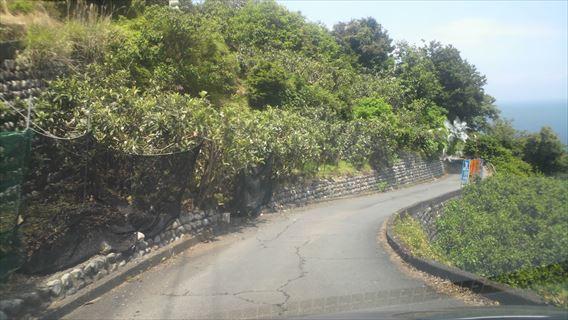 さった峠の道(由比側)1