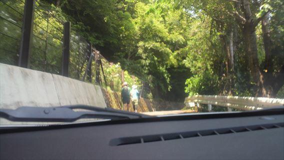 さった峠の道(由比側)5