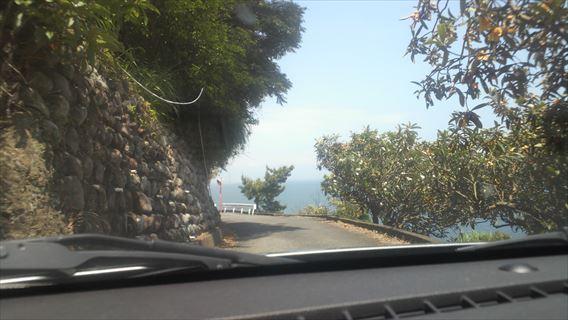 さった峠の道(由比側)7