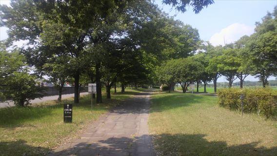 水路横の遊歩道