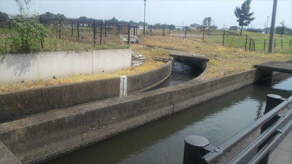 水路の分岐