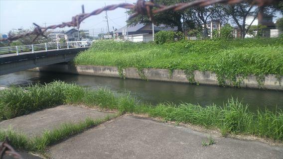 見沼代用水路