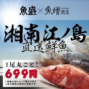 1705-魚盛-5月中旬-販促web1
