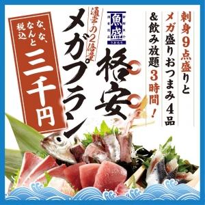 1705_魚_メガ盛