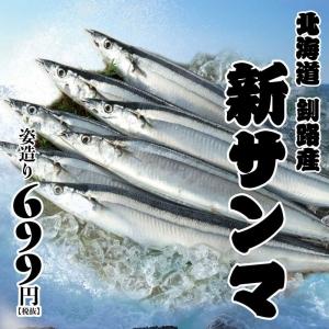 1708-魚盛-8月販促-ぐるなびc