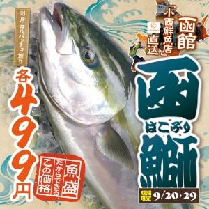 1709魚盛9月後半ぐる