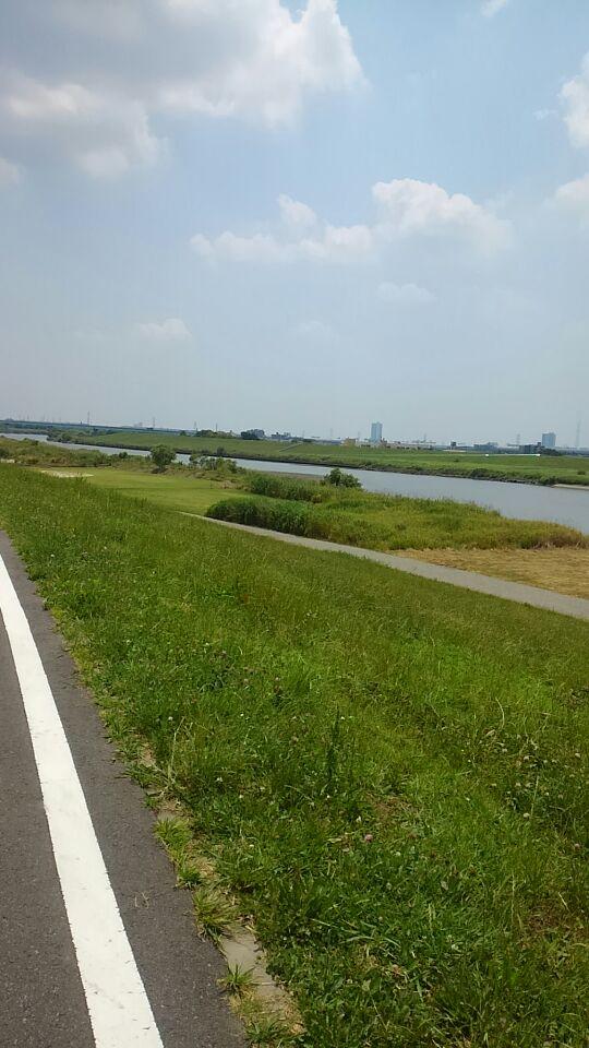 江戸川河川敷1