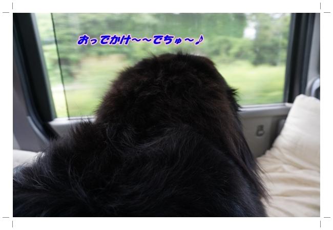2017-6おでかけ1