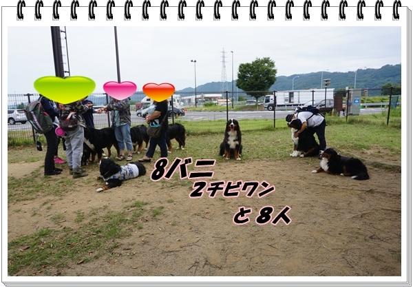 2017-9メンバー