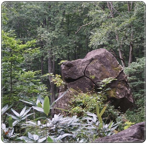 2017-9sスヌーピー岩2