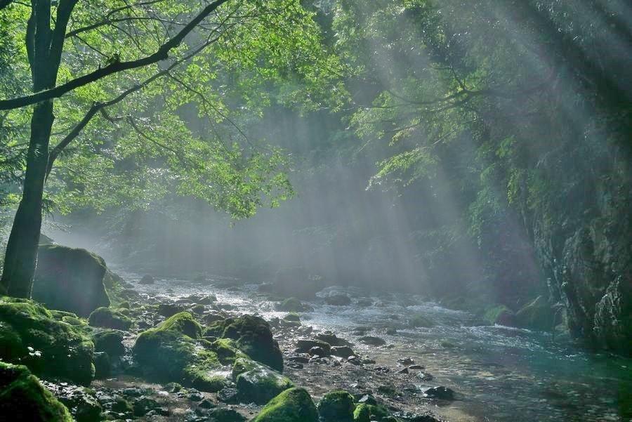 円原川の光芒1