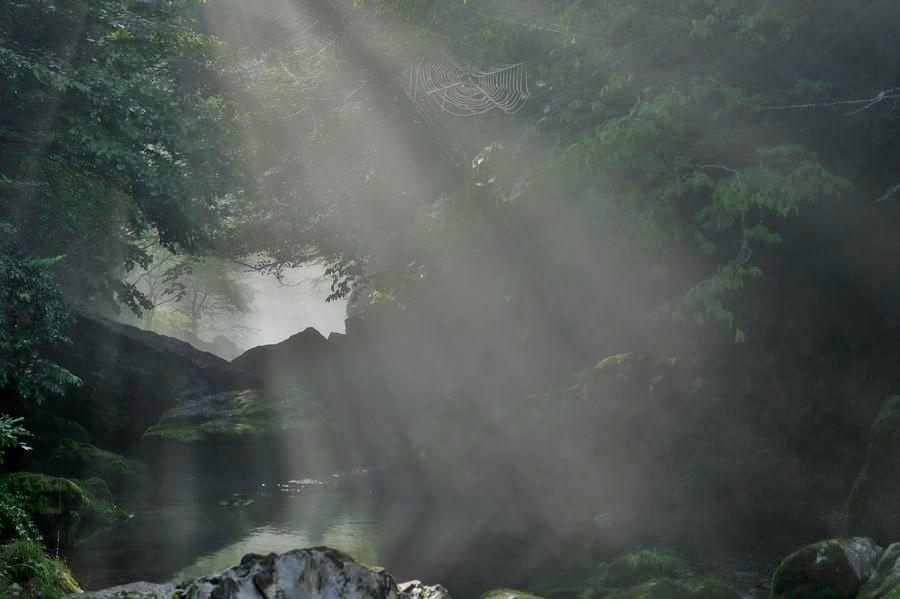 円原川の光芒2