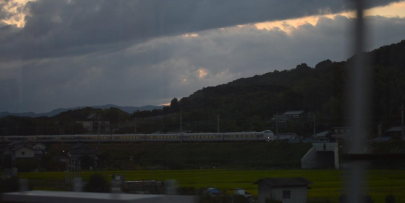 DSC_0069v.jpg