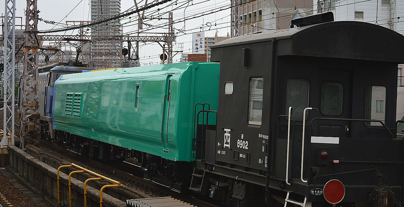 DSC_6477s.jpg