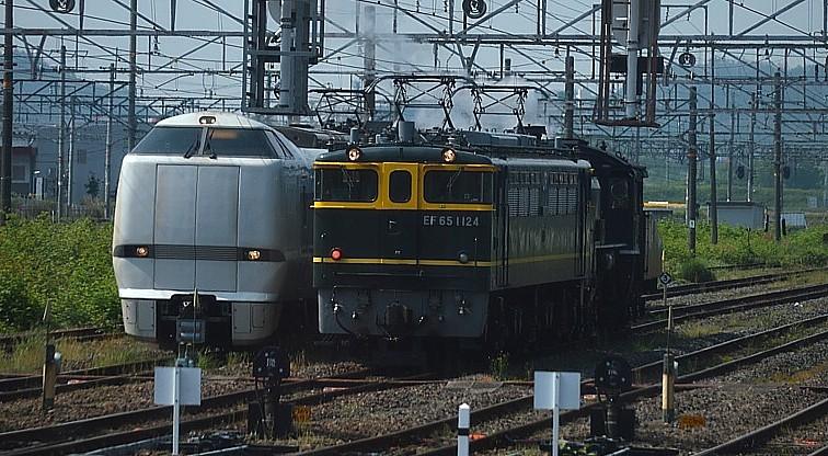 DSC_6603s.jpg