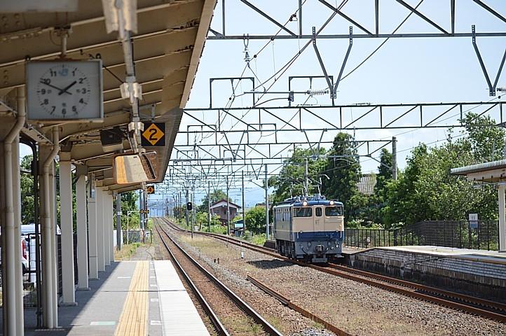 DSC_7126v.jpg