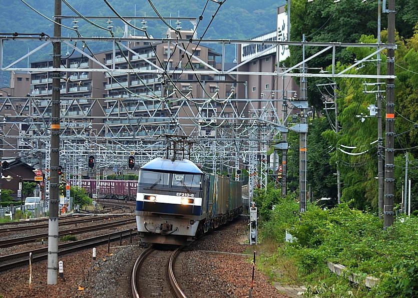 DSC_7575n.jpg