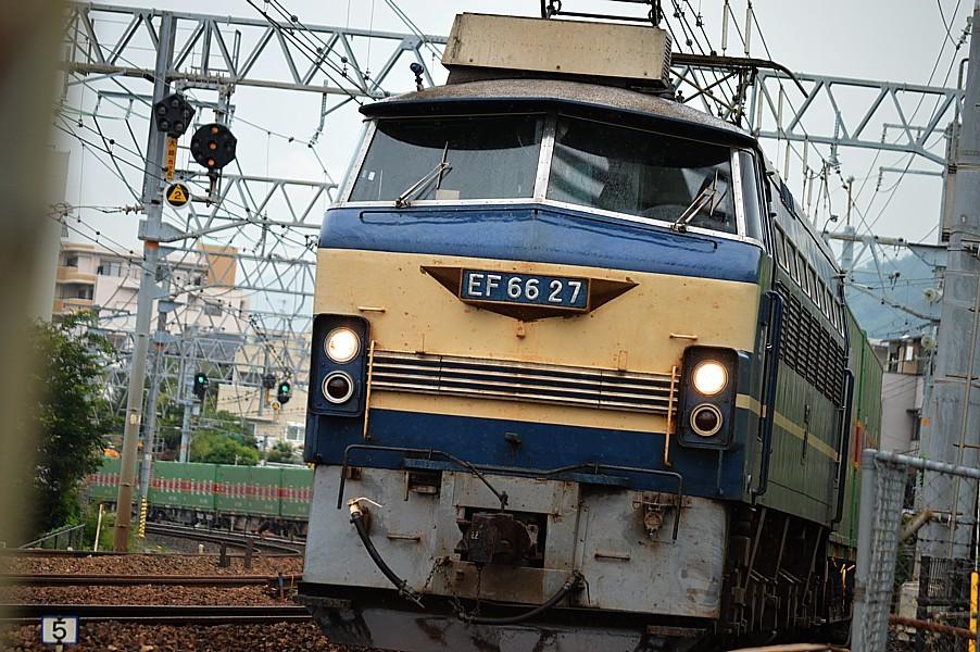 DSC_7619v.jpg