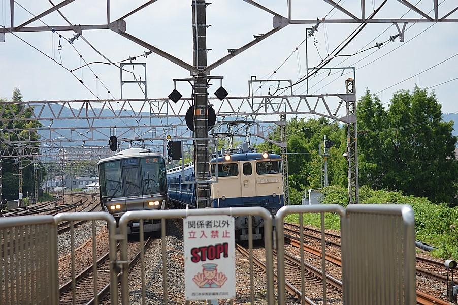 DSC_8120s.jpg