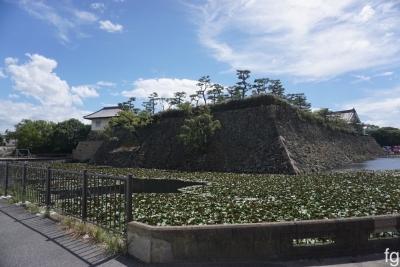 20160904岸和田_04 - 2