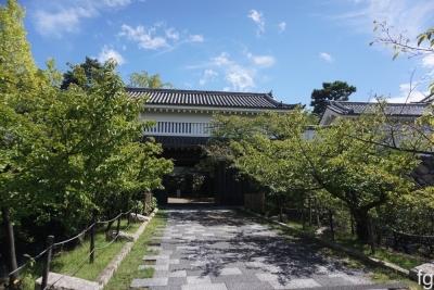 20160904岸和田_04 - 9