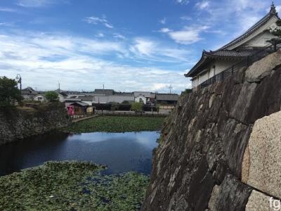 20160904岸和田_05 - 11