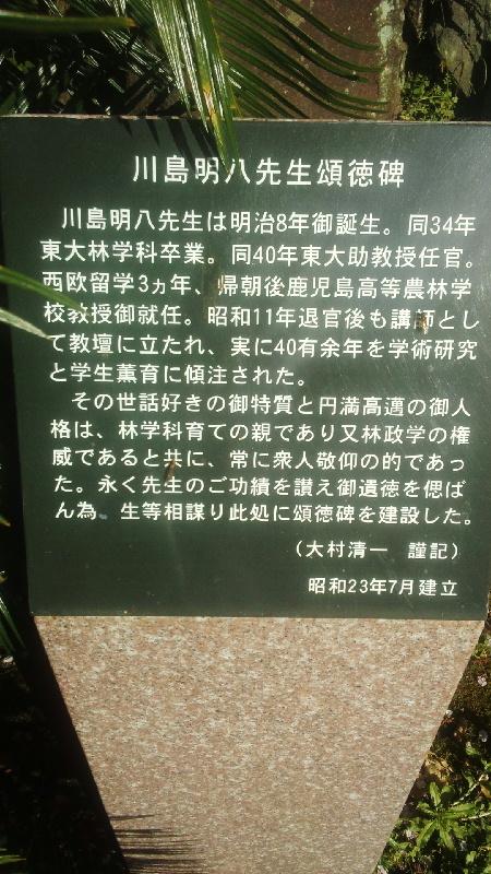 4月14日 桜の下の碑文