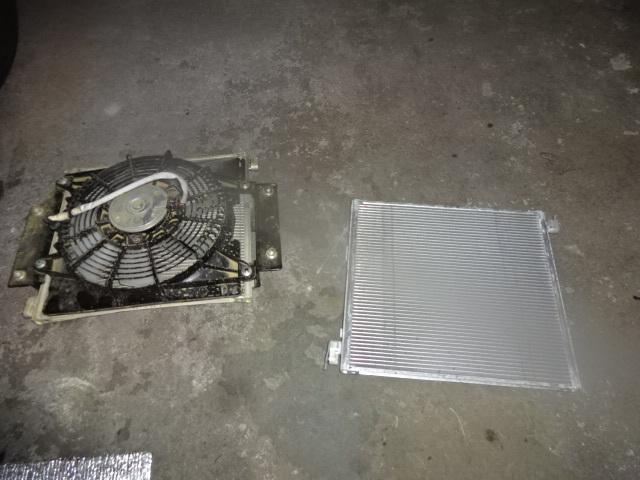 DSC06042.jpg