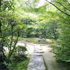 金福寺 (3)