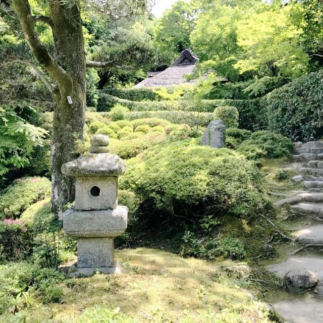 金福寺 (7)
