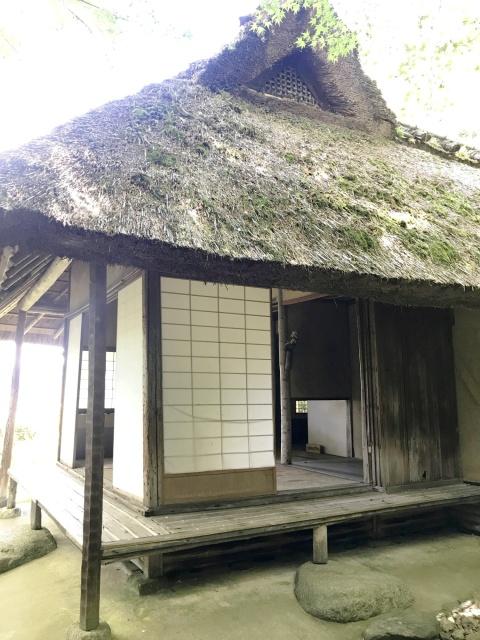 金福寺 (10)