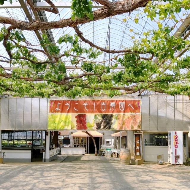 古寿園 (1)