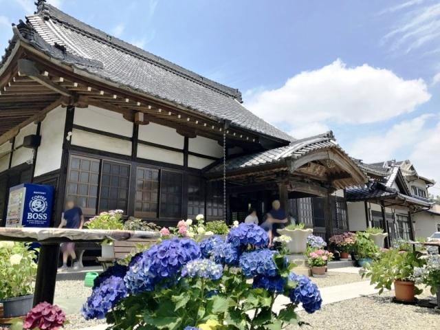 金泉寺 (1)