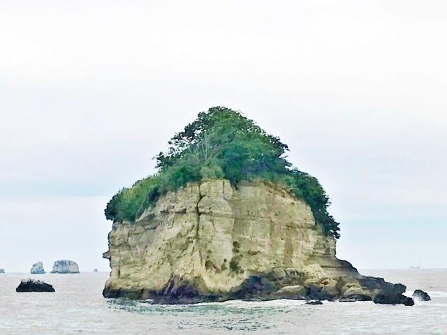 松島湾 (15)