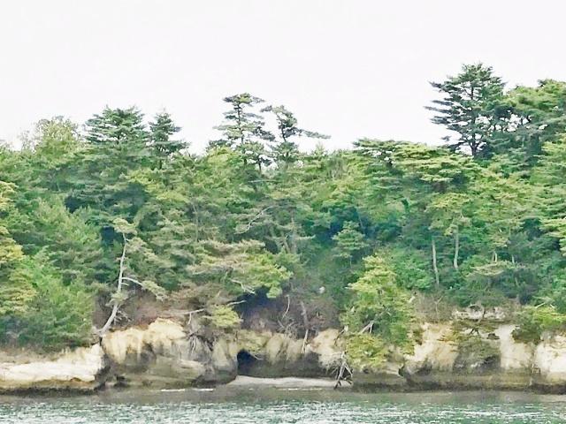 松島湾 (19)