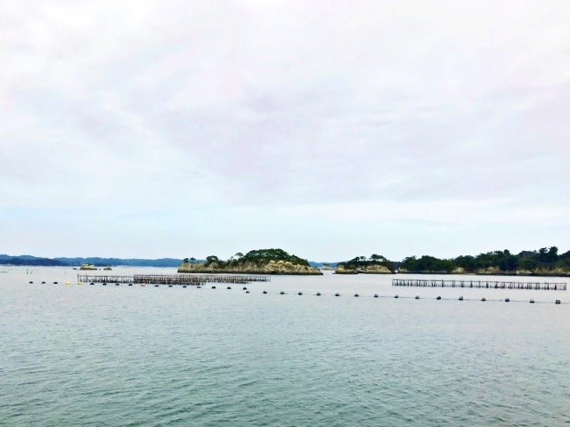 松島湾 (22)