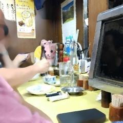 焼き鳥きむら (8)