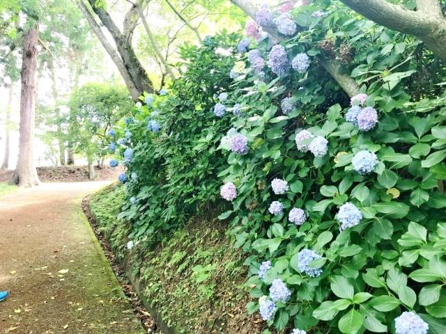 10 松島 (10)