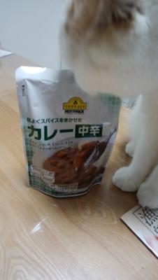 58円カレー 白猫
